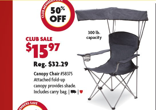 Canopy Bag Chair