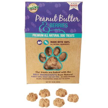 Peanut Butter Berry Treats
