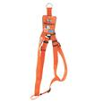 Pet Harness - Large, Orange