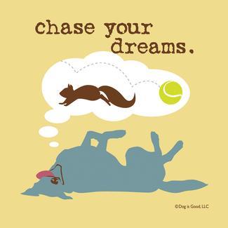 Chase Dreams Coasters