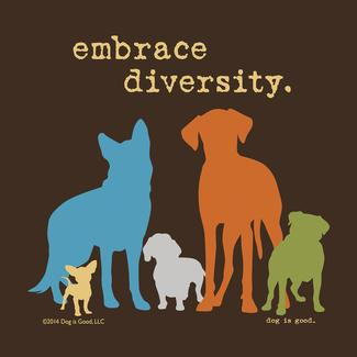 Embrace Diversity Coasters