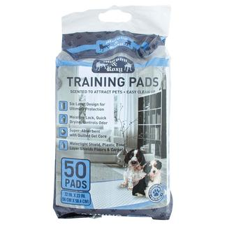 Training Pads, Pack of 50