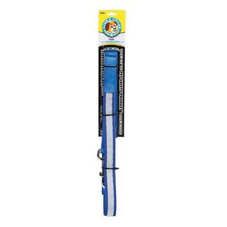 Illuma Collar Walking Leash, 1''W x 75''L, Blue