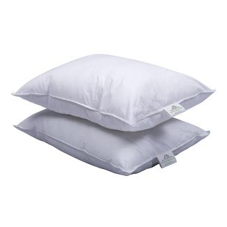 MotorHome InnerSpace® RV Comfort Pillow, 2 Pillow Pack