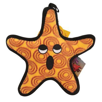Starfish Toy