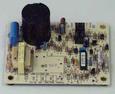 Module Board