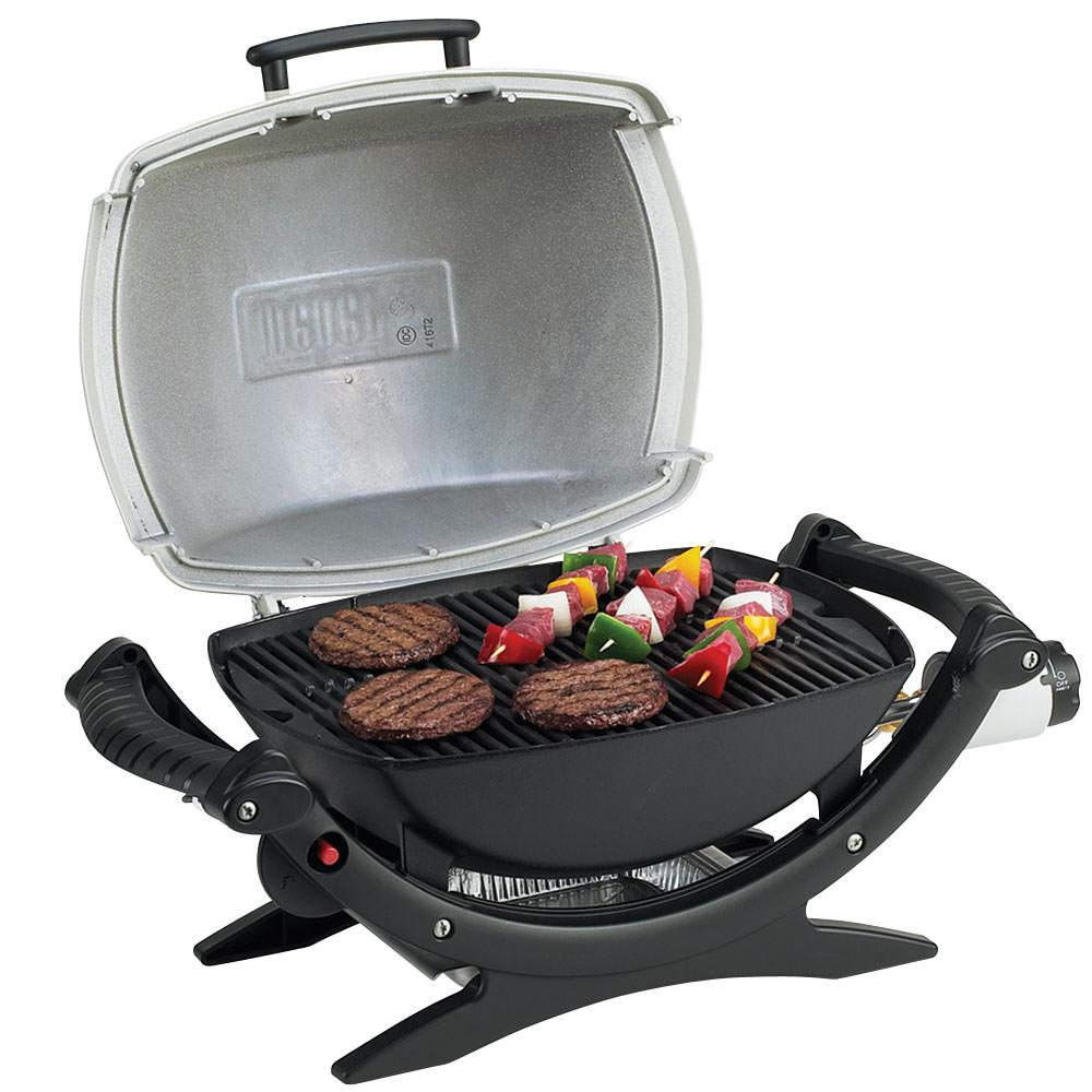 weber q 100 gas grill weber 386002 gas grills. Black Bedroom Furniture Sets. Home Design Ideas