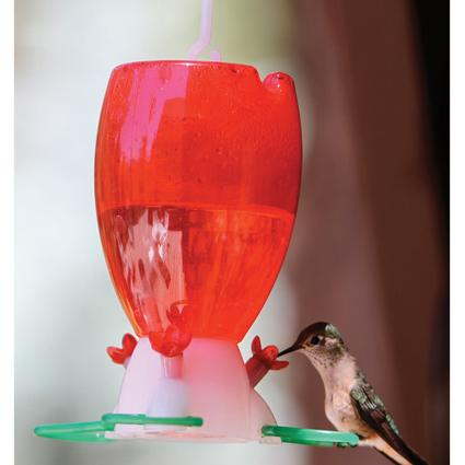 Pre-Filled Hummingbird Feeder