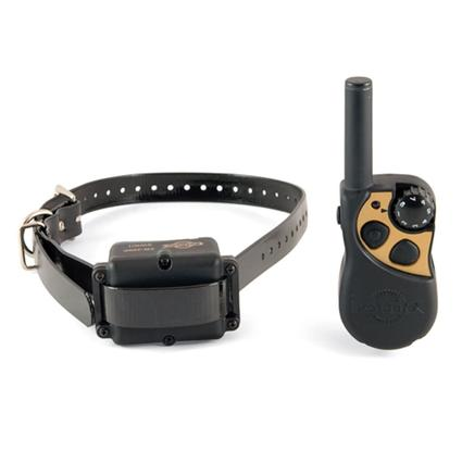 Yard and Park Remote Trainer