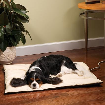 Heated Wellness Cushion - Little Dog