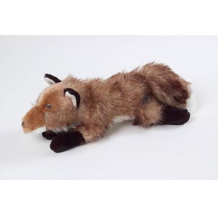 AKC Fox