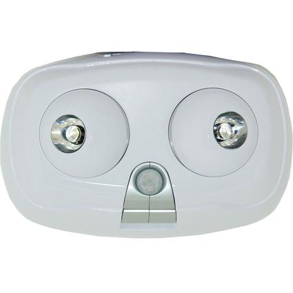 Motion-Activated Security Light with Adjustable Sensor