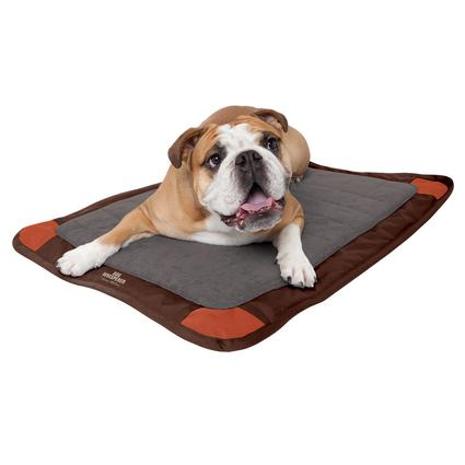 Dog Whisperer with Cesar Millan Deluxe Travel Crate Mat