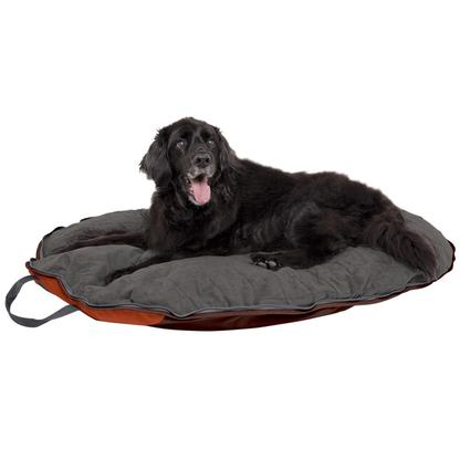 Dog Whisperer with Cesar Millan Folding Travel Bed