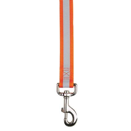 Reflective Dog Leash - 6 Foot