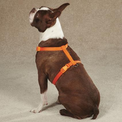 Pet Nylon Harness - 14
