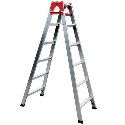 6' Extension Ladder