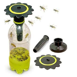 Soda Bottle Wasp Trap