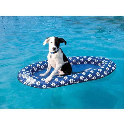 Pet Spring Float