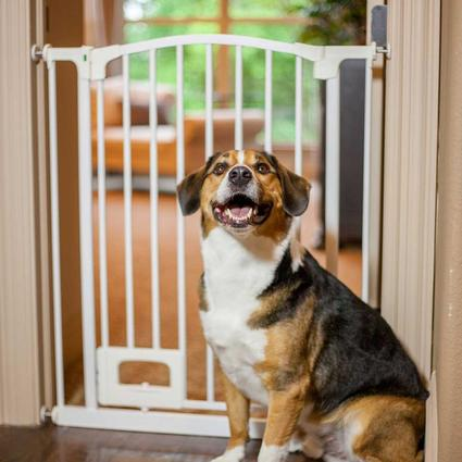 Primetime Petz Hands-Free Elite Foot-Control Gate with Door
