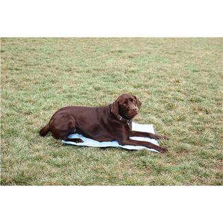 Pet Cooling Mat, 24