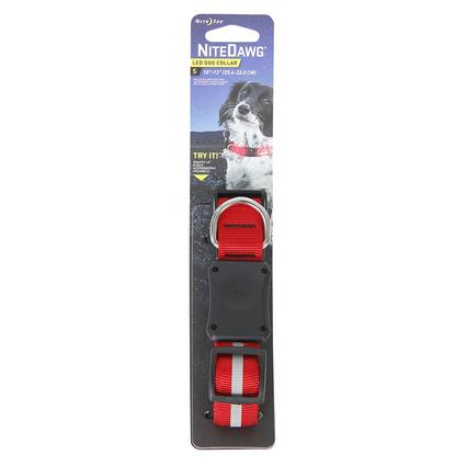 Light-up Dog Collar, Extra Small