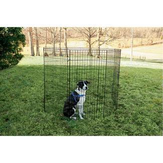 Pet Fence, 48