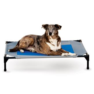 Coolin' Pet Cot, Large, Gray/Blue