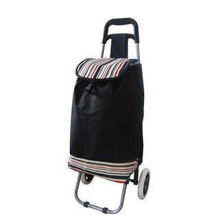 Folding Trolley Bag