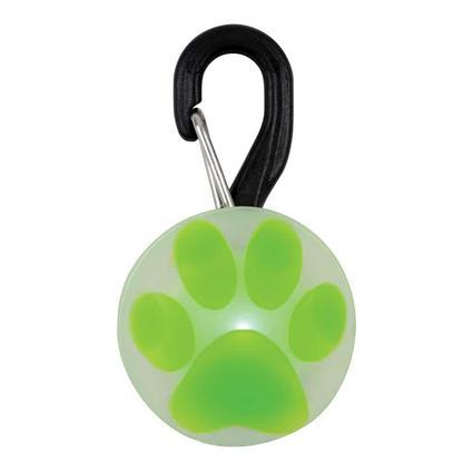 SpotLit LED Collar Light, Paw Lime